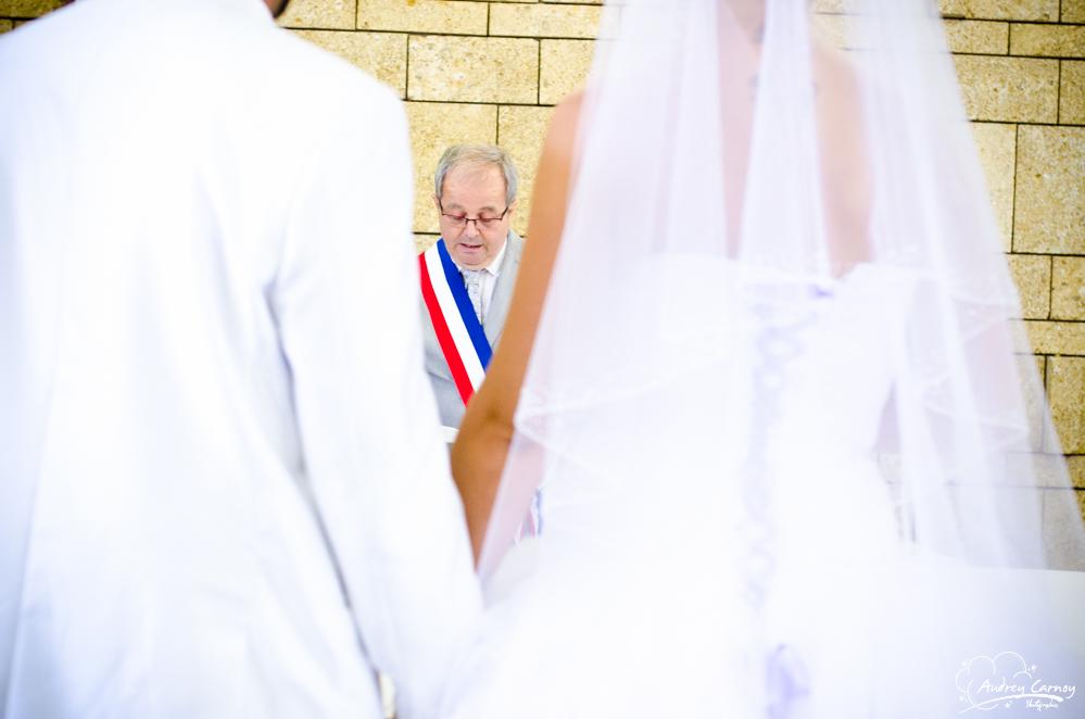 Mariage Virginie et Johan 94